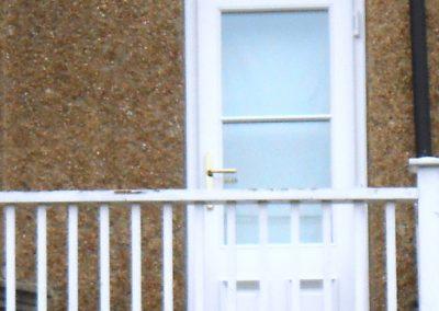 White Finish Hardwood Door & Top Light